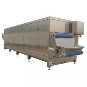 Pharmaceutical Use PLC Control Vacuum Type Dryer for Herbal Medicine Extract