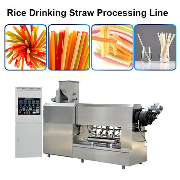 PP PE PLA Biodegradable drinking Straw Extrusion Making Machine pipe extruder extrusion line #1 image