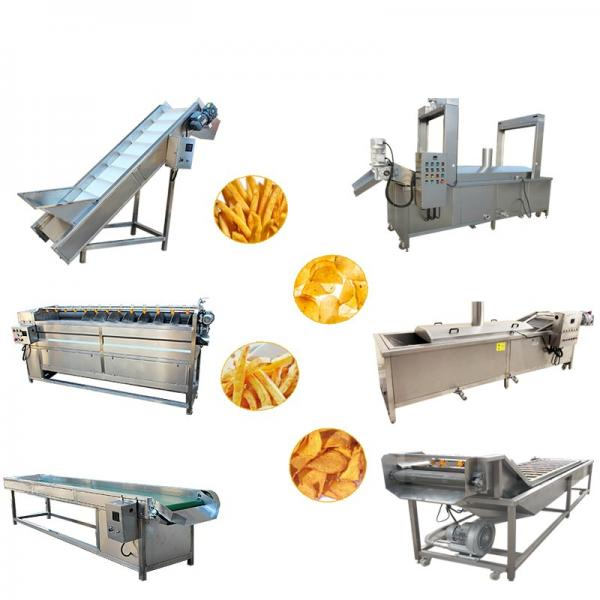 Professional Automatic Frozen French Fries Production Line #1 image