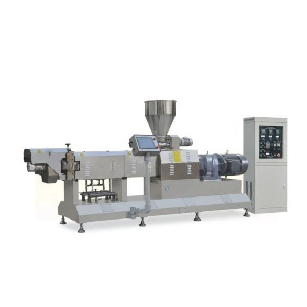 Twin Screw Extruded Snack Food Production Machine #1 image