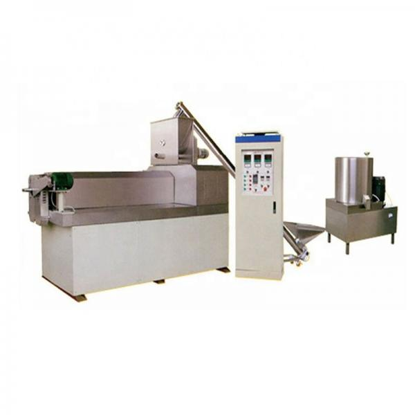 Extruded Artificial Rice Processing Line #1 image