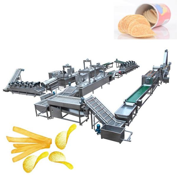 Potato Chips and Pasterized Sausage Drying Machine and Dryer Machine for Bag Food #2 image