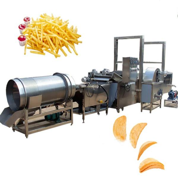 Commercial Ce Approved Standing with Potato Chips Frying Machi with Potato Chips Frying Machine #3 image