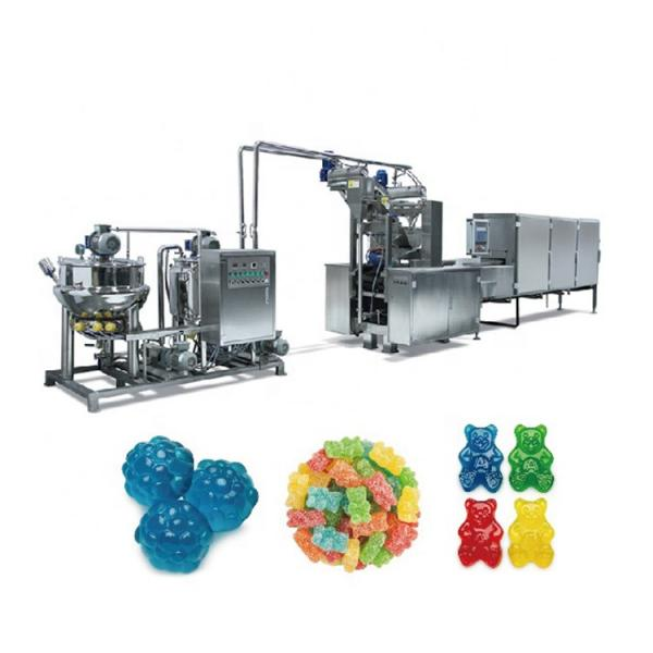 Animal Aquarium Pet Dog Cat Monkey Fox Bird Tilapia Floating Fish Feed Pellet Production Machine Snack Food Mill Processing Making Extrusion Line for Sale #2 image